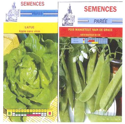 semence2